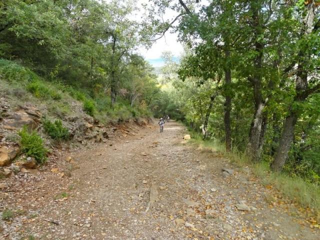 Vuelta por el Camino Santiago