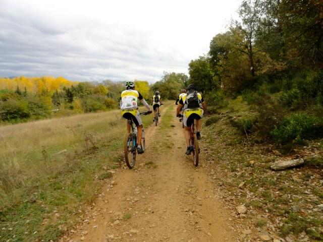 Volviendo, se ven a la izquierda los chopos amarillos que marcan por donde va el río Aragón