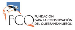 logo fcq