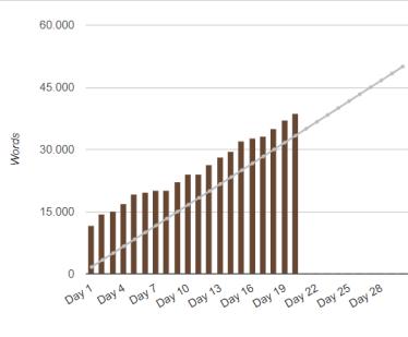 stats nanowrimo