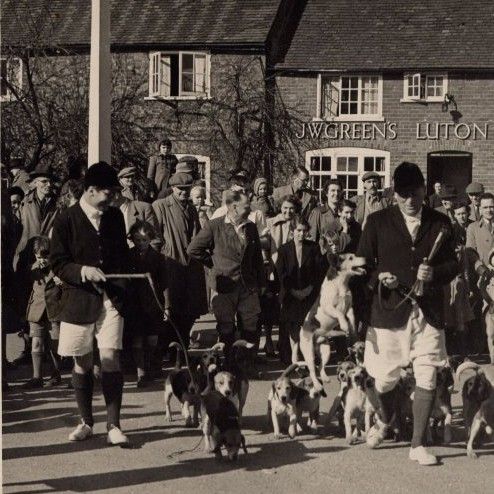 1956 The Beagle Hounds meeting at the Fox. The spectators are waiting to see them move off to work the fields around the village with the huntsmen on foot. In 2004, hunting with hounds was made illegal.
