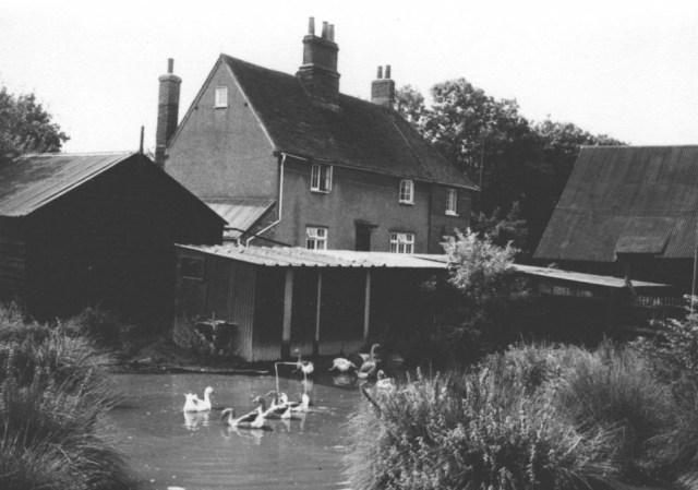 Burge End pond