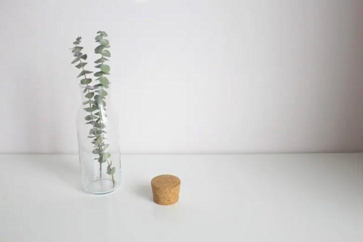 シンプルなコルクと瓶とグリーン