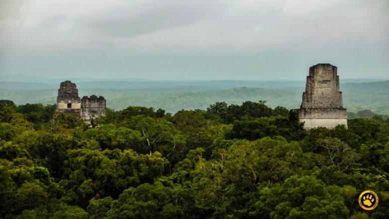 Templos na cidade Maia de Tikal