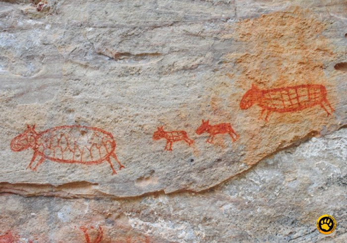 Gravuras de animais com cerca de 12 mil anos de idade na Serra da Capivara