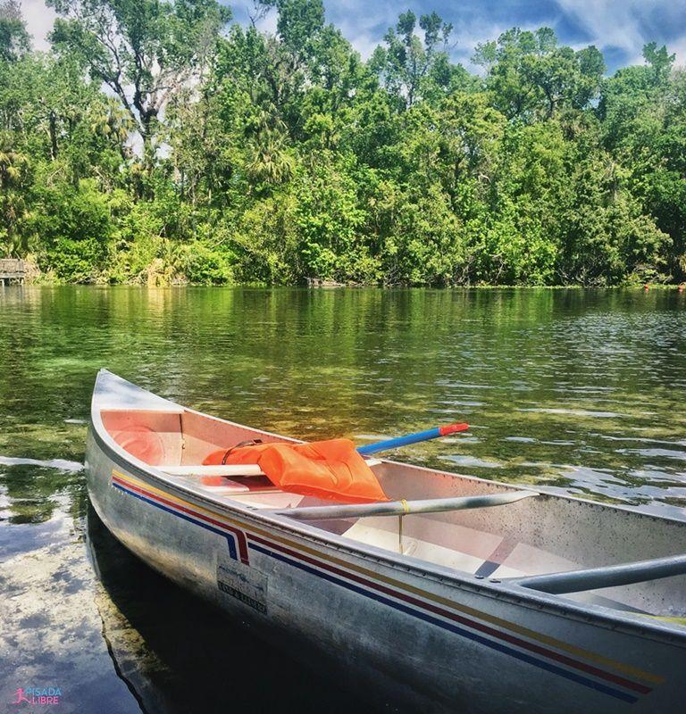 Canoa en Alexander Springs Ocala