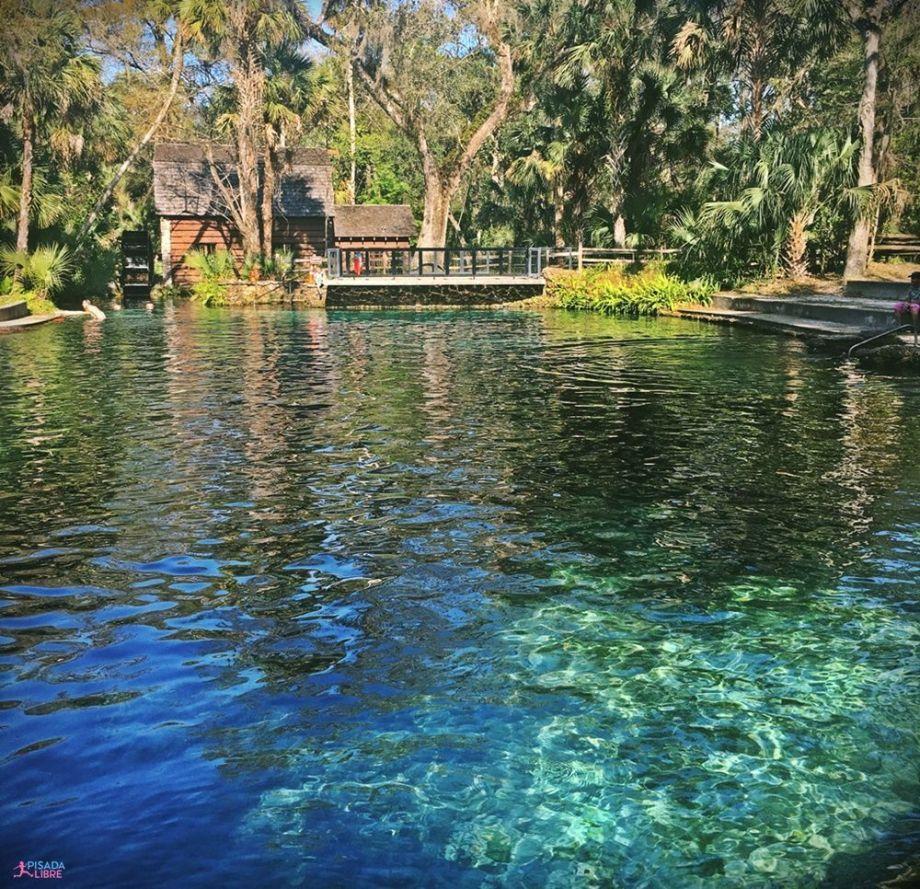 Manantial Juniper Springs, Ocala Florida
