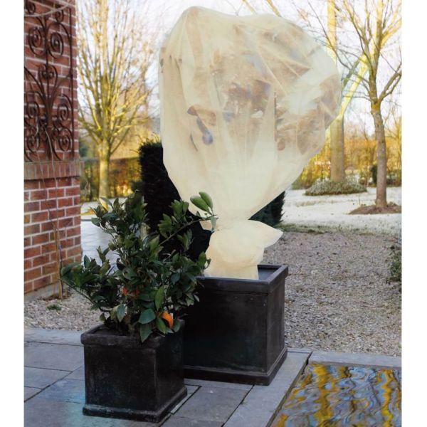 Nature Husă anti-îngheț din fleece, bej, 2 x 5 m, 60 g/m²