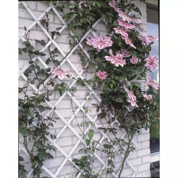 Nature Gard de grădină tip Trellis, 100 x 200 cm PVC, alb, 6040703