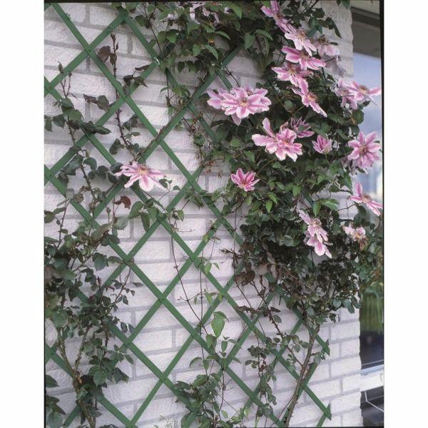 Nature Gard de grădină tip Trellis, 100 x 200 cm PVC, verde, 6040704