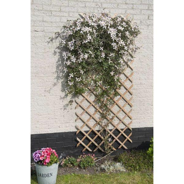 Nature Spalier de grădină, natural, 50 x 150 cm, lemn