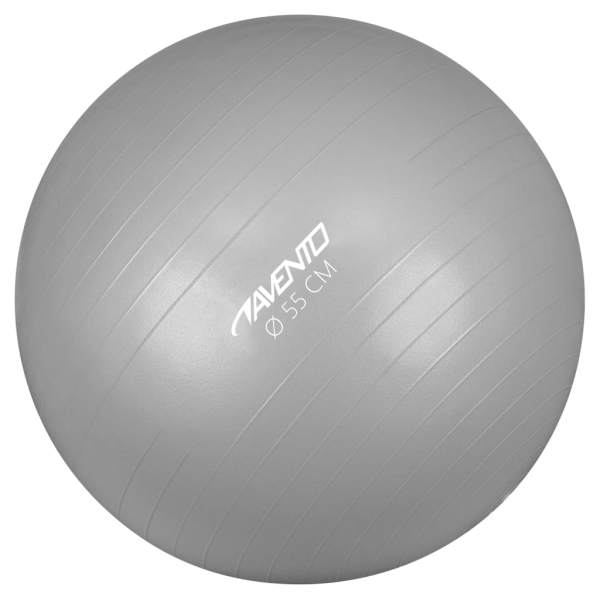 Avento Minge de fitness/gimnastică, argintiu, diam.55 cm