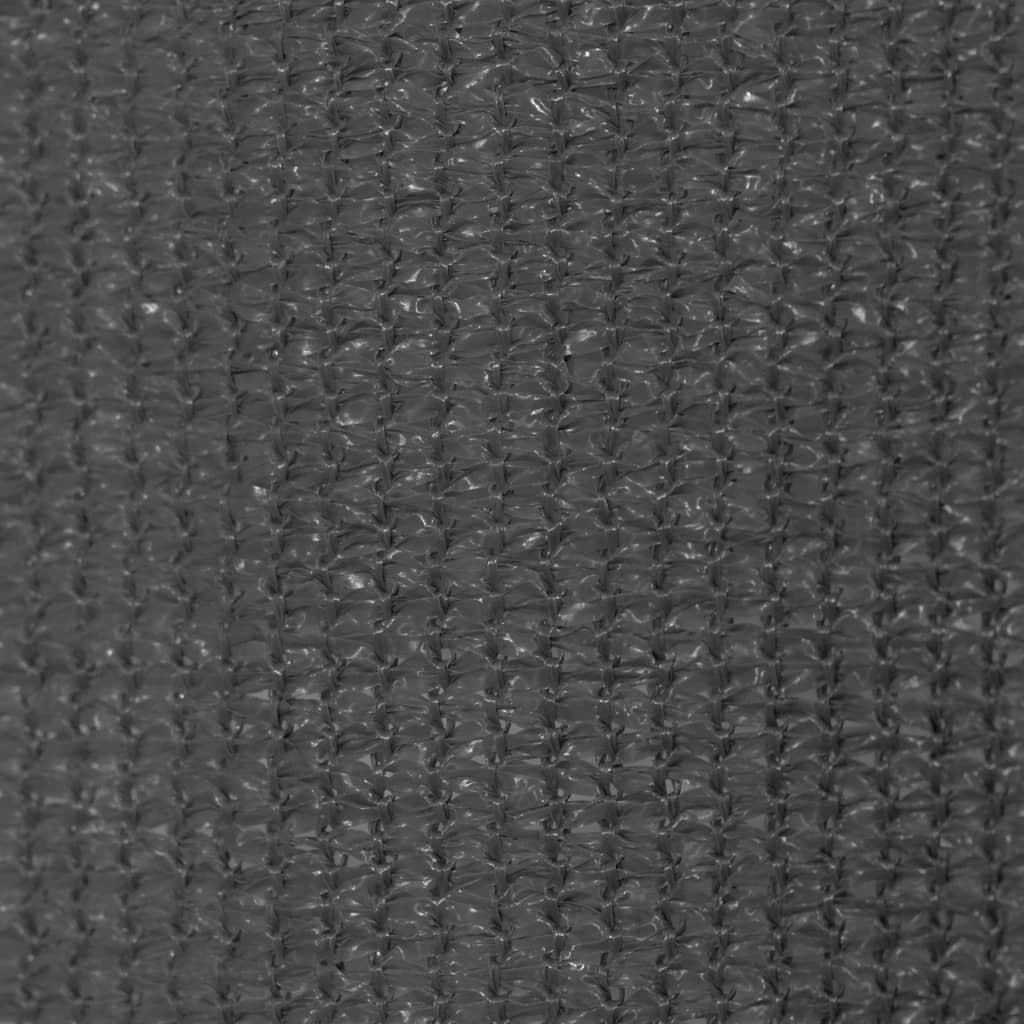 vidaXL Jaluzea tip rulou de exterior, 300 x 230 cm, antracit