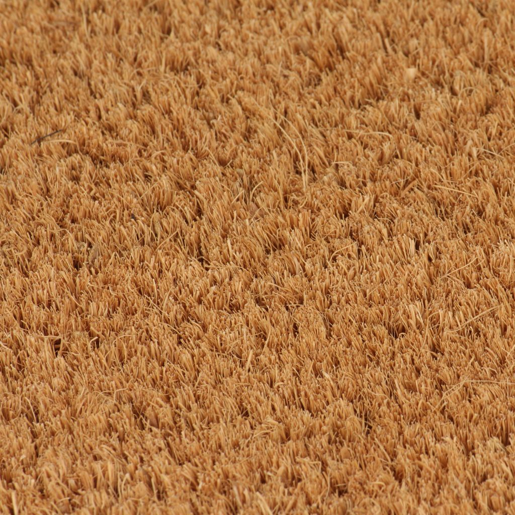 vidaXL Covor de ușă, fibră de nucă cocos, 24 mm, 100 x 300 cm, natural