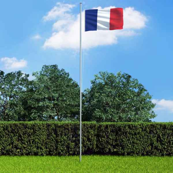 vidaXL Drapel Franța și stâlp din aluminiu, 6,2 m