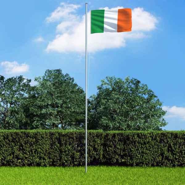vidaXL Steag Irlanda și stâlp din aluminiu, 6,2 m