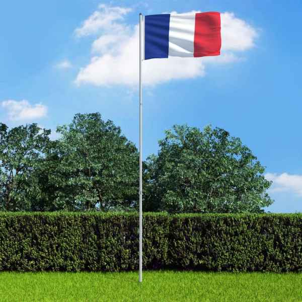 vidaXL Drapel Franța și stâlp din aluminiu, 6 m