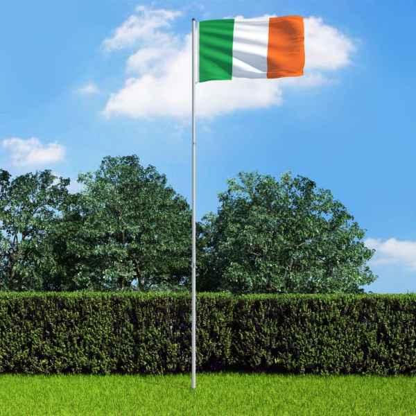 vidaXL Steag Irlanda și stâlp din aluminiu, 6 m