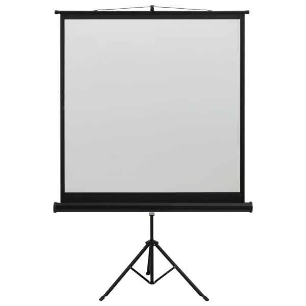 vidaXL Ecran de proiecție cu suport 48″ 1:1