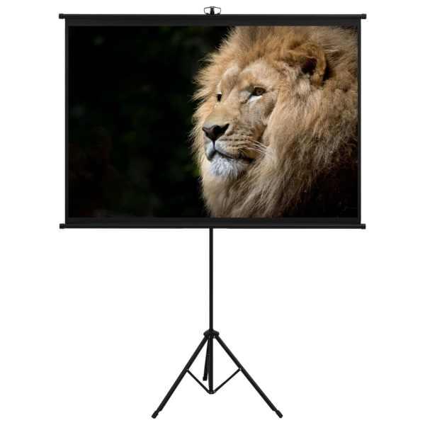 vidaXL Ecran de proiecție cu trepied 63″ 1:1