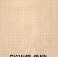 AZULEJOS FORA DE LINAH ELIANE 20x20 PARATI