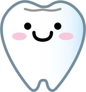 歯 フリー素材