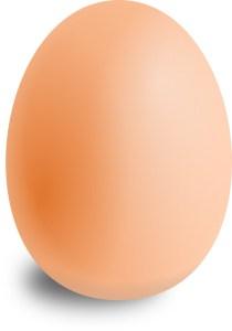 卵 フリー素材