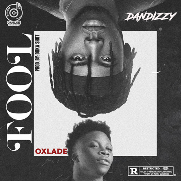download dandizzy fool