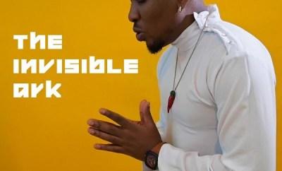 pepenazi the invisible ark