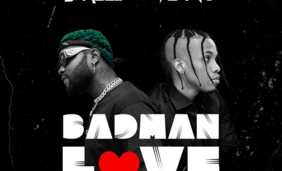 Skales Badman Love ft Tekno