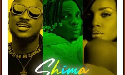Idahams Shima Remix ft Peruzzi and Seyi Shay