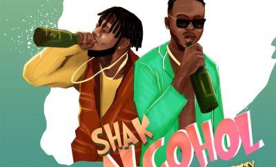 Elenushuga Shak Alcohol ft DanDizzy