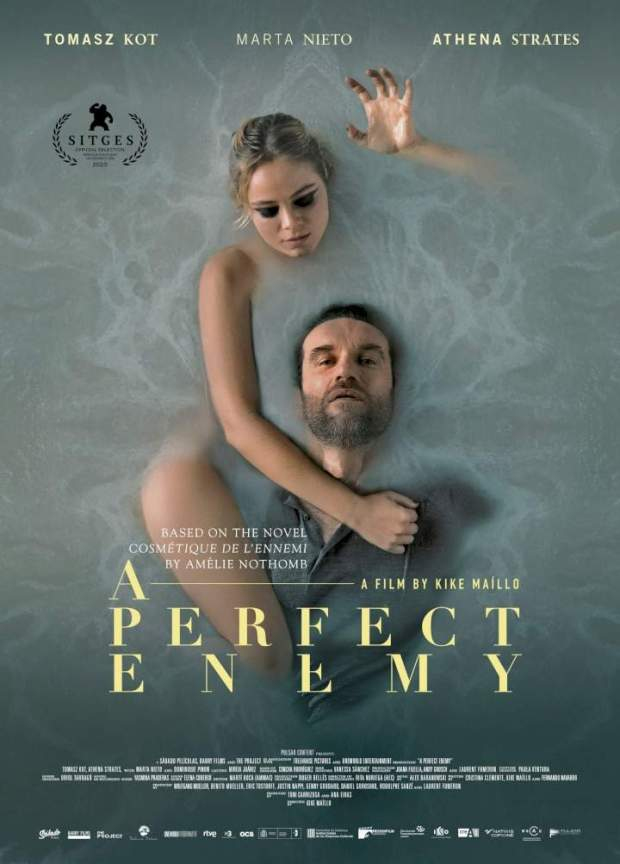 Download A Perfect Enemy full movie