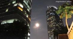Terang bulan
