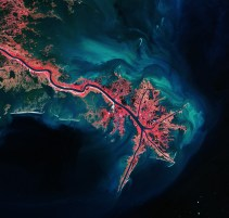Delta do Rio Mississippi, Estados Unidos.