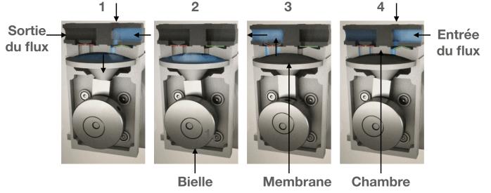 fonctionnement pompes à membrane