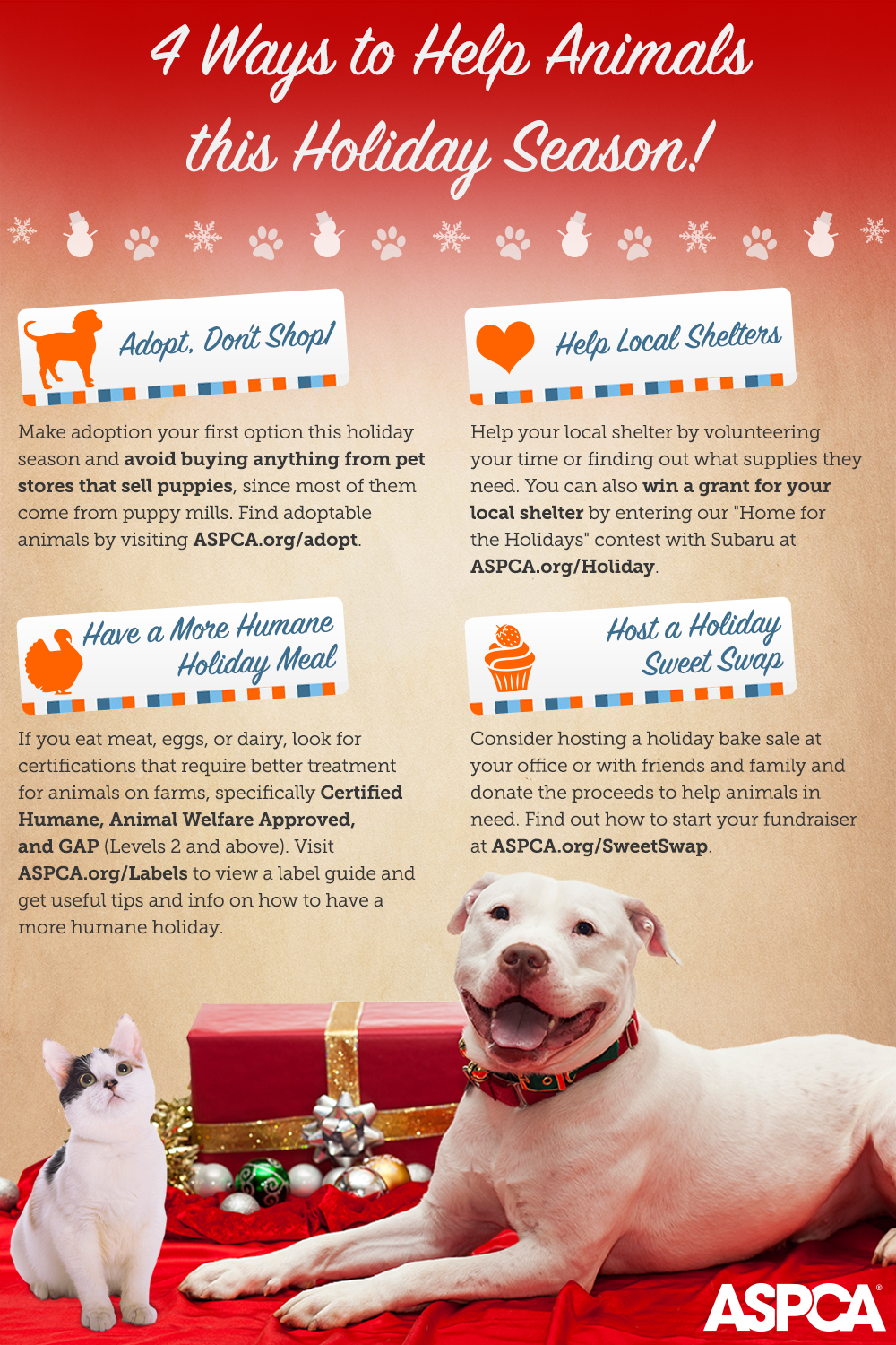 Infographic 4 Ways To Help Animals This Holiday Season