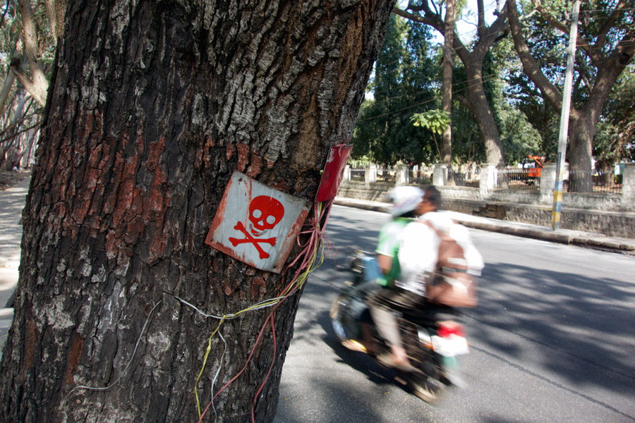 warning on tree