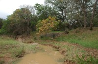 wet creek