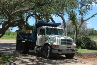 Truck under Trees (2)