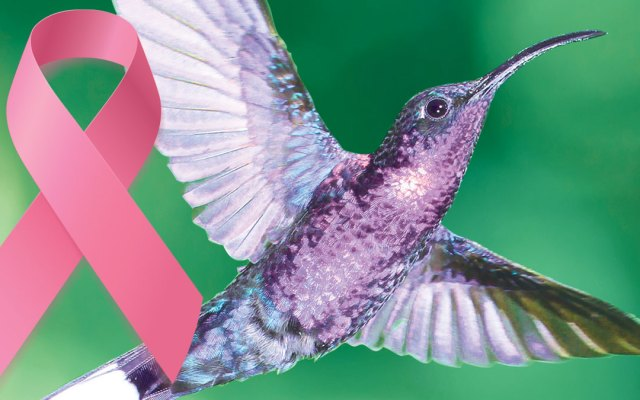 Reiki & Breast Cancer