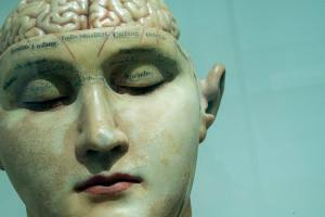 sculpture of human face and brain