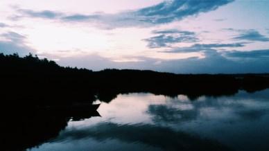 Sunrise at a mangrove