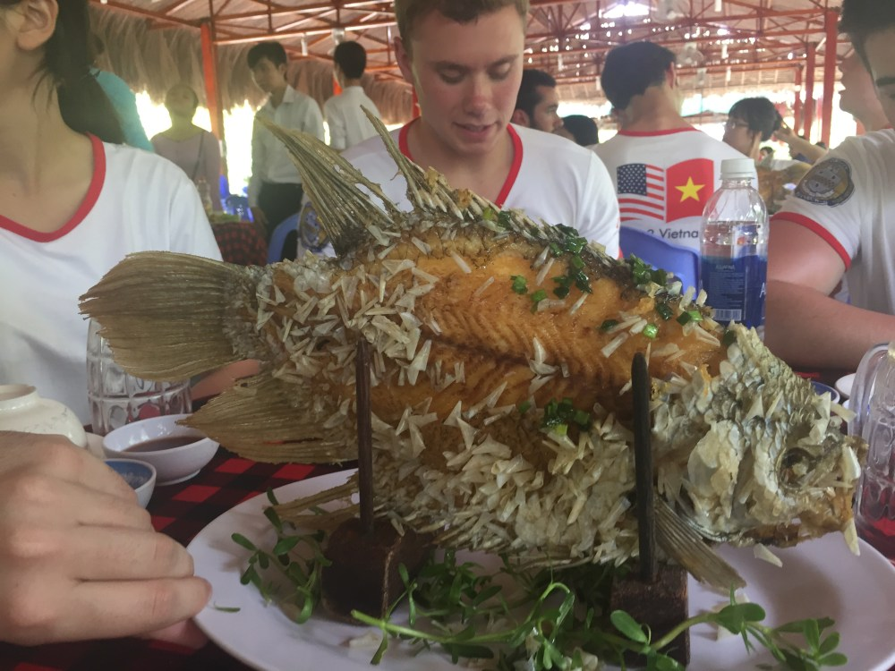 Mekong - fish off bone.JPG