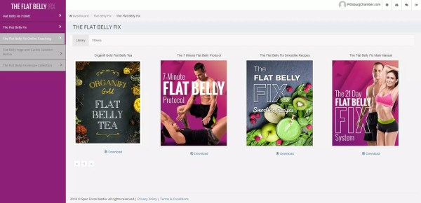 The Flat Belly Fix Download Page