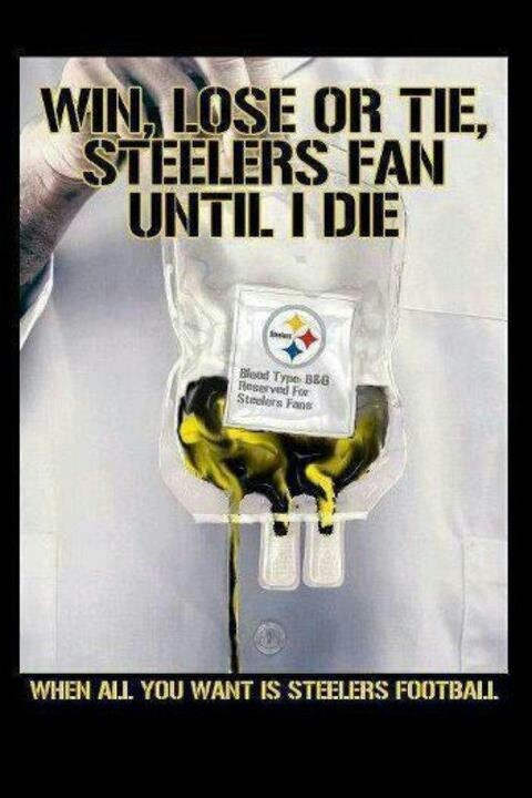 Steelers Fans Bleed Black and Gold