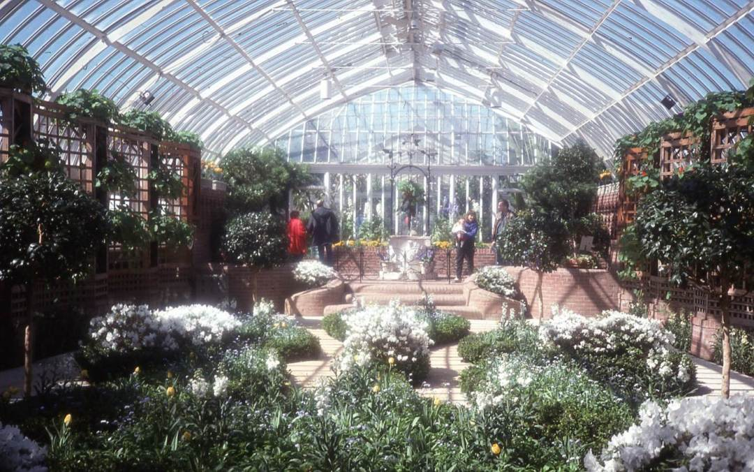 History of Phipps