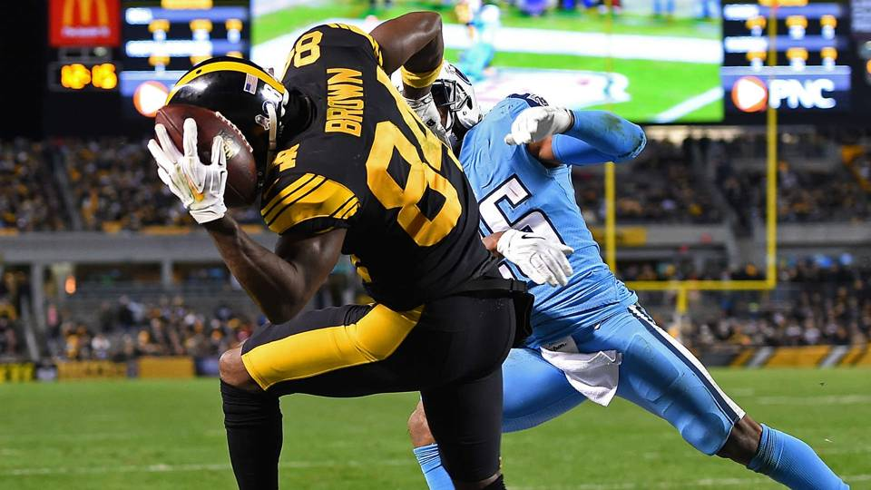 Highlights from the Steelers Season