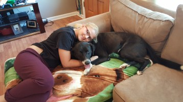 Lucky Pittsburgh Great Dane rescue (3)