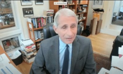 Dr. Fauci testimony NHL Return